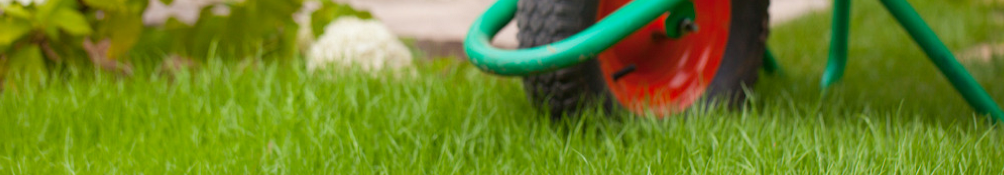 Kamloops |  Lawn Care Technician - Featured Image